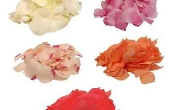 petals artificals diferents colors