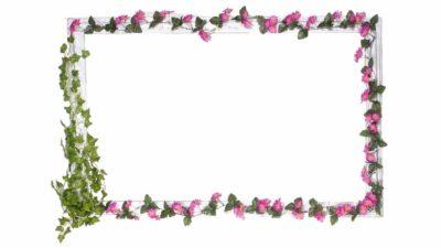 marc blanc de porexpan amb enrredadera de fulles i flors liles