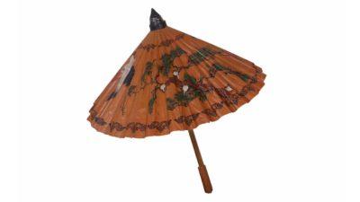 parasol xines gran