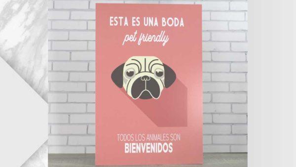 cartell gos