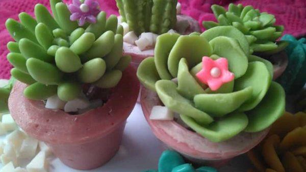 sabó de cactus